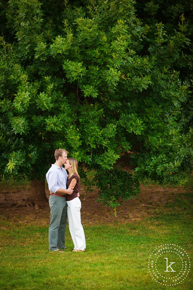 engaged couple in front of tree in Prospect Park