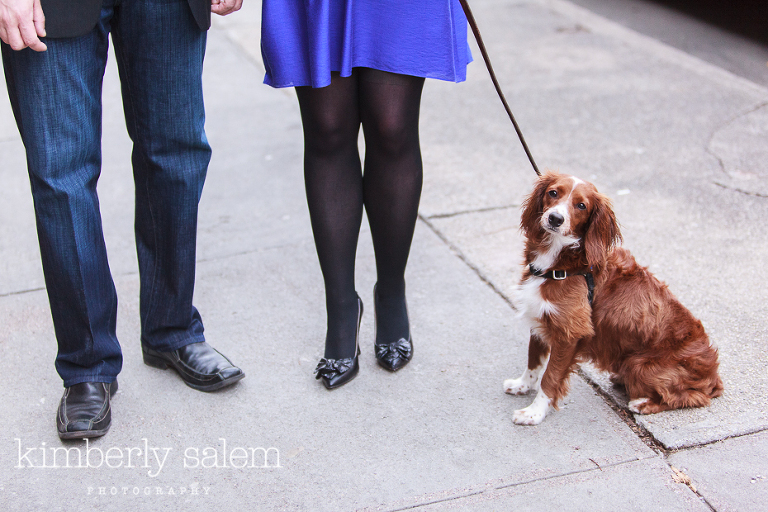 engaged couple with their spaniel puppy